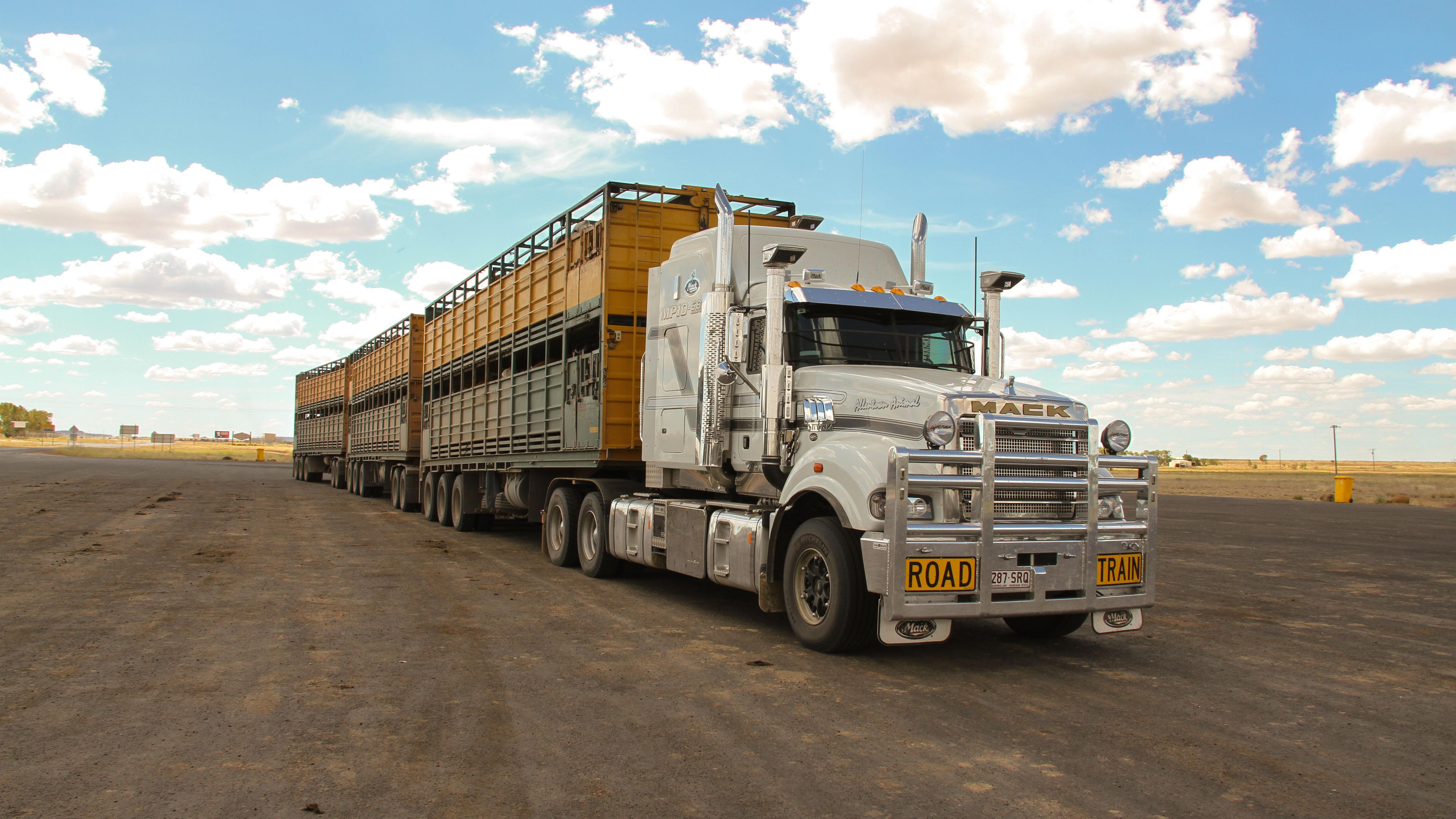 Die fünf Besten – Trucks